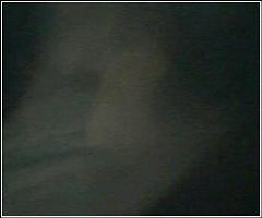 Picture of ghostly alien entity